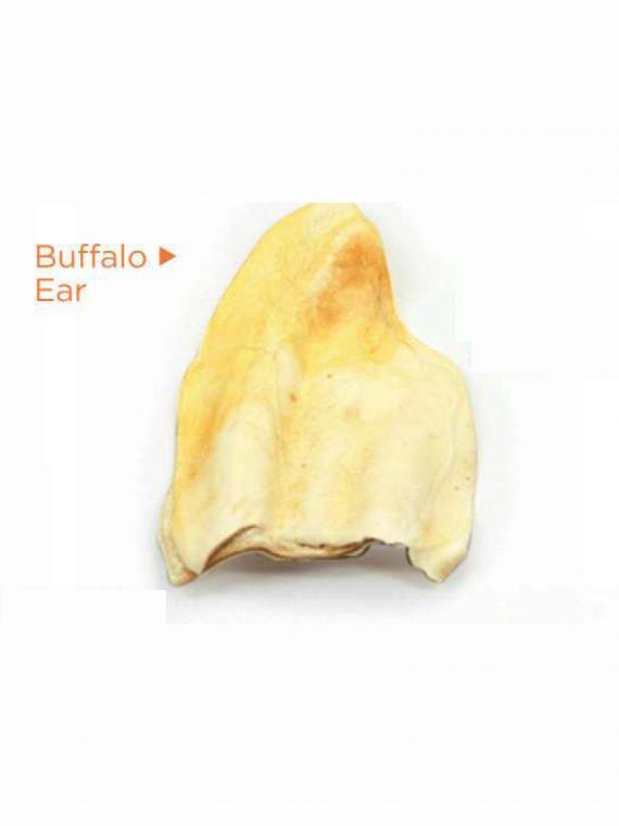 buffalo_ear