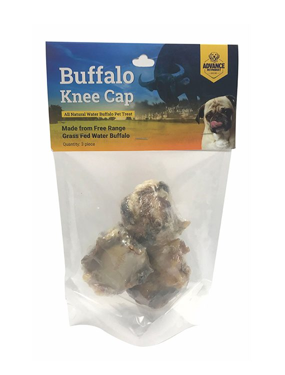 Buffalo Knee Cap Bone
